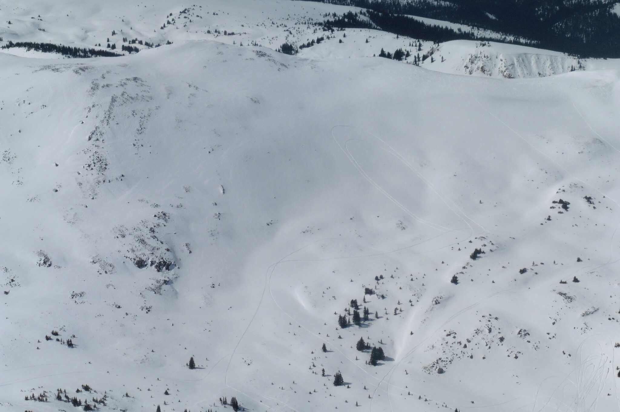 Snowmobilers... Crazy bastards. 35 degree slope? Check. Northern Aspect? Check. High Avy Danger? Check. Let's ride!