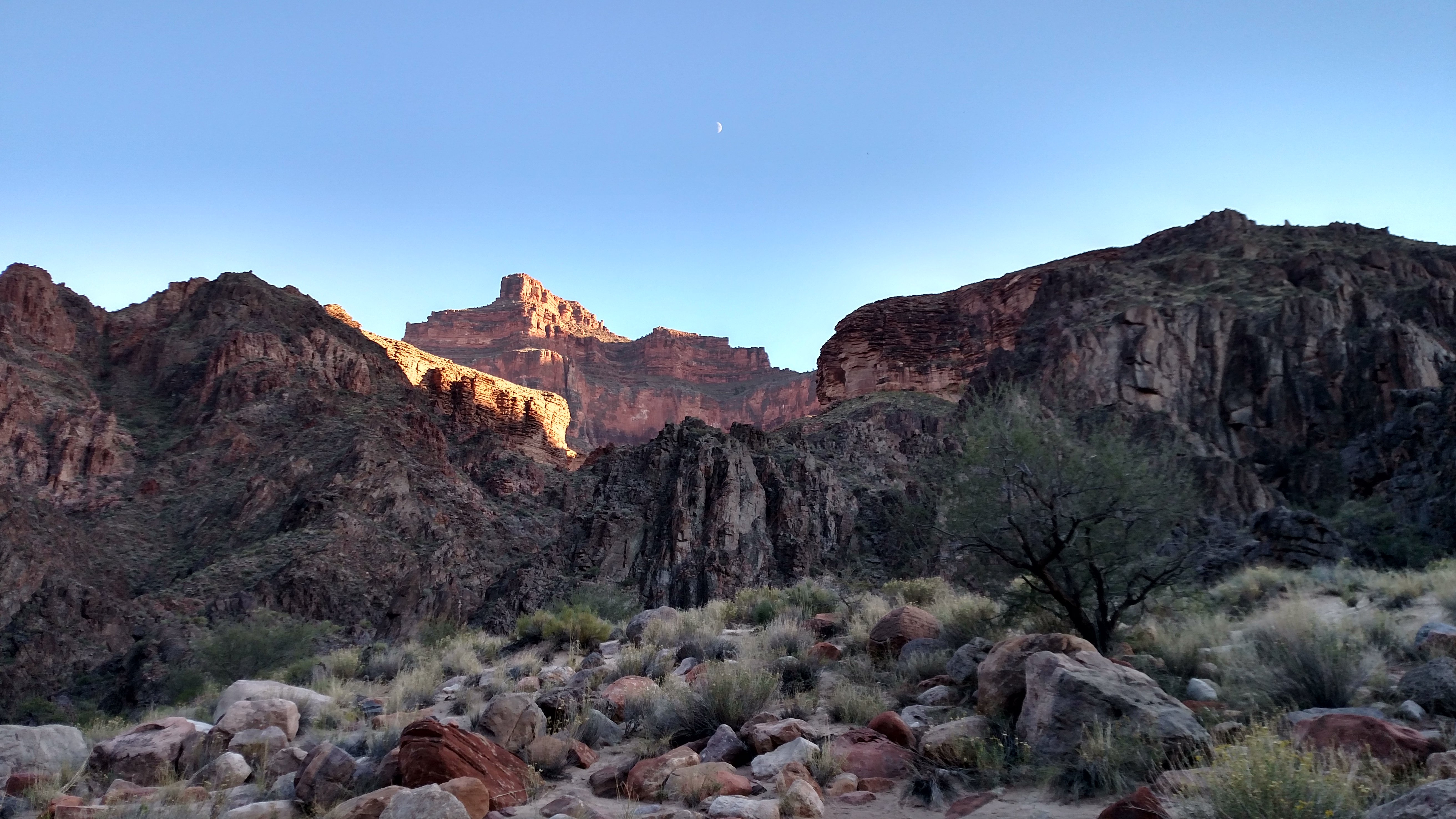 View from my tent (Pima Point)